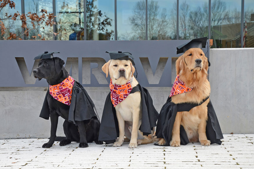 Puppy University Program, Partnering Vet Students And Service Dogs In Training, Graduates Its First Class